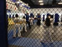 Tiger Martial Arts