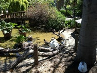 Palo Alto Junior Museum & Zoo