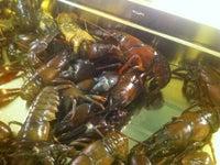 Monahan's Seafood Market