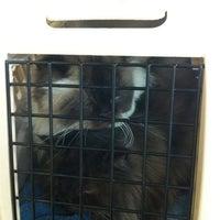 Photo taken at Alta Mesa Animal Hospital by Simon B. on 2/13/2012