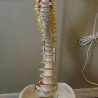 Photo taken at Wells Clinic of Chiropractic by Stephen T F. on 6/18/2012
