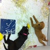 Photo taken at Pet Shop by Namitta S. on 5/23/2012
