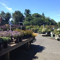 Photo taken at Swansons Nursery by Hollie on 8/5/2012