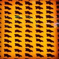 Das Foto wurde bei Page Museum at the La Brea Tar Pits von Fox F. am 8/20/2012 aufgenommen