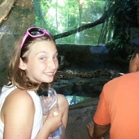Photo taken at Indian Python by Michael P. on 8/12/2012