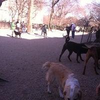 Photo taken at Bull Moose Dog Run by Lindsay K. on 3/11/2012
