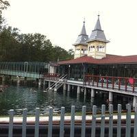 Photo taken at Hévízi-tó by Csaba S. on 8/12/2012
