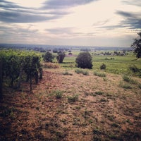 Photo taken at Chateau Coutet by Champagne P. on 8/27/2012