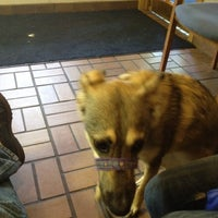 Photo taken at Bay Pines Veterinary Clinic by Leonard H. on 5/1/2012