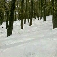 Foto tomada en Chapelco Ski Resort por Alan A. el 8/6/2012