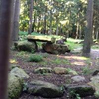 Photo taken at Wildpark Schwarze Berge by Susanne W. on 9/9/2012