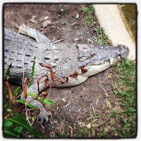 Photo taken at Wildlife Habitat by Scott Y. on 7/8/2012