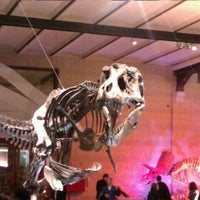 Photo taken at Museum of Natural Sciences by Sophie N. on 3/4/2012