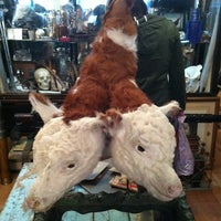 Photo taken at Obscura Antiques and Oddities by Dianna M. on 4/28/2012