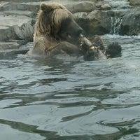 Photo taken at Minnesota Zoo by Angela M. on 4/10/2011