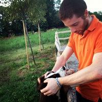 Foto scattata a Azienda Agricola La Fattoria da Tommaso D. il 8/3/2012