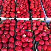 Photo taken at Santa Monica Farmers Market by Nancy H. on 6/6/2012