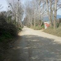 Photo taken at El Bajo by Chris D. on 9/10/2012