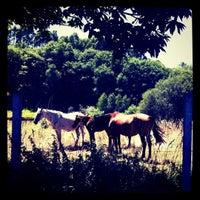 Photo taken at Fonte da Santa by Carlos T. on 8/10/2011