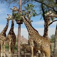 Photo taken at Phoenix Zoo by Frankie F. on 4/14/2012