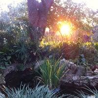 Photo taken at Zilker Botanical Gardens by Monica S. on 12/29/2011