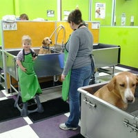 Photo taken at Wag N Wash by Zachary B. C. on 2/1/2012