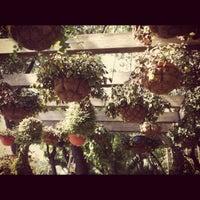 9/8/2012 tarihinde Alejandro F.ziyaretçi tarafından La Ventanita'de çekilen fotoğraf