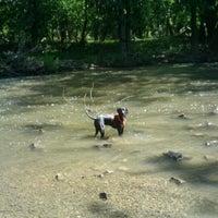 Foto scattata a La Bagh Woods (Cook County Forest Preserve) da Whitney P. il 8/19/2012