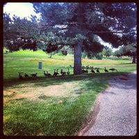 Photo taken at Davis Park Golf Course by Dex W. on 7/20/2012