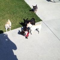 Photo taken at West Kendall Hammocks Dog Park by David R. on 3/1/2012
