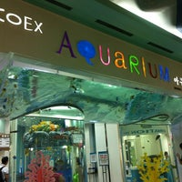 Photo taken at COEX Aquarium by Zainul H. on 8/28/2012