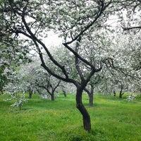 Снимок сделан в Яблоневый сад пользователем Pavel Z. 5/14/2012