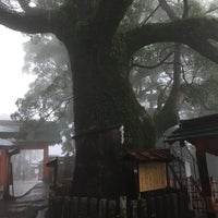 Photo taken at 天然記念物 那智の樟 by Nao on 8/7/2017
