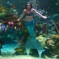 Photo taken at Mermaid Lounge by Robert M. on 4/20/2014
