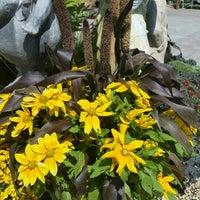 Photo taken at Reynolds Garden Shop by Marta R. on 9/9/2015