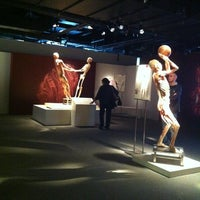 Photo taken at BODIES...The Exhibition by Teri K. on 10/27/2012