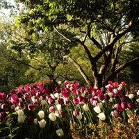รูปภาพถ่ายที่ Shakespeare Garden โดย rob z. เมื่อ 5/5/2013