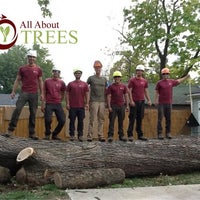 Photo taken at All About Trees by Noel B. on 7/1/2015