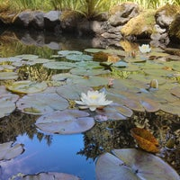 Photo taken at Portland Japanese Garden by Max G. on 7/6/2013