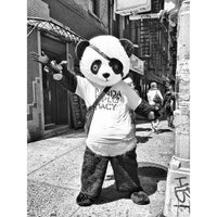 Photo taken at Panda Diplomacy by Robert S. on 5/6/2013