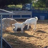 Photo taken at Balliu Herding by Mariah E. on 6/16/2014