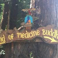 Photo taken at Land of Medicine Buddha by Jennifer N. on 6/21/2015