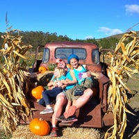 Photo taken at Bob's Pumpkin Patch by Cody T. on 10/20/2014
