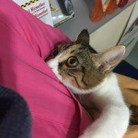 Photo taken at Atakoy veteriner poliklinigi by Elif K. on 9/30/2015