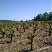 Photo taken at Talty Winery by Ivan L. on 4/27/2013