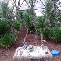 12/10/2014 tarihinde Damla Nur G.ziyaretçi tarafından Odunpazarı Botanik Parkı'de çekilen fotoğraf