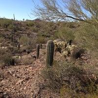 Photo taken at Arizona-Sonora Desert Museum by Ricky P. on 11/3/2012
