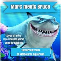Photo taken at SEA LIFE Melbourne Aquarium by Marc C. on 6/8/2014