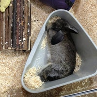 Photo taken at Pets at Home by Mark t. on 1/10/2013