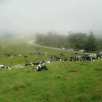 Photo taken at Desa Cattle (Sabah) Dairy Farm Sdn. Bhd. by Bibie O. on 2/12/2013